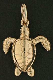 15313-Ridley Olive/Kemp Turtle