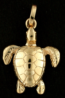 15318-Loggerhead Sea Turtle